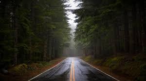 gloomy drive