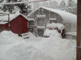 winter storm 12-27-14 013
